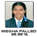 Megha Palled